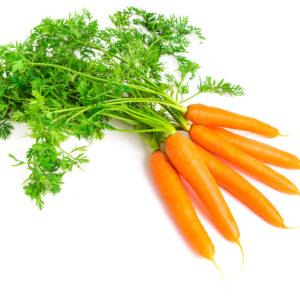 fibre de carotte