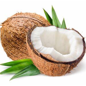 Kokosnusswasser Konzentrat tiefgekühlt
