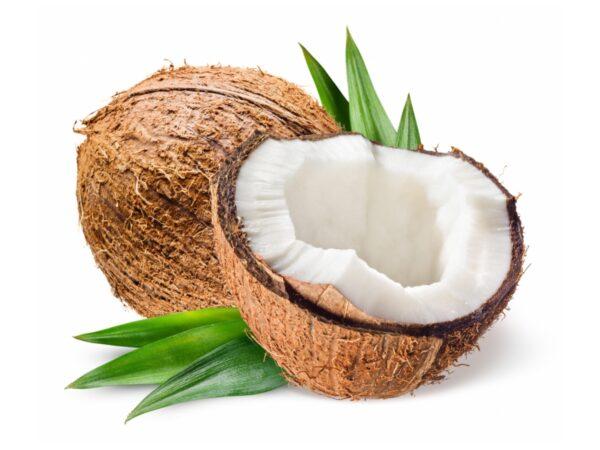 Kokosnusswasser NFC aseptisch